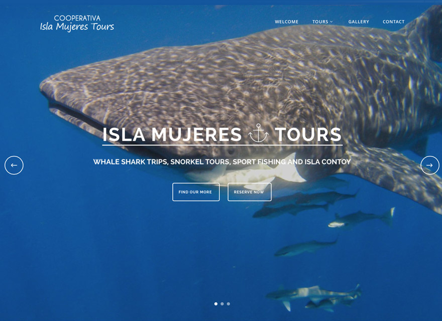 Coorperative Isla Mujeres Tours