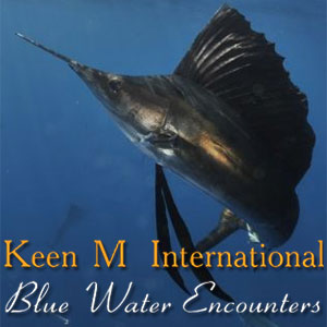 Keen M International Sportfishing Isla Mujeres Blue Water Encounters