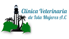 Vet Clinic on Isla Mujeres