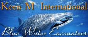 Keen M International Sportfishing and Blue Water Encounters Isla Mujeres