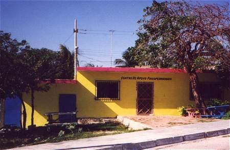 the little yellow school house